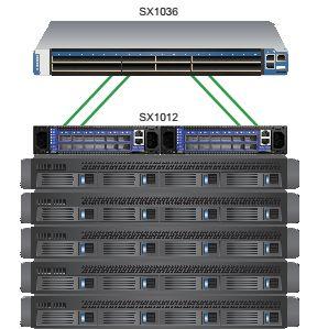 Типичное использование Mellanox SX1012
